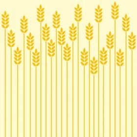 Wheat Illustration Wheat illustrationWheat Botanical Illustration