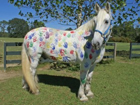Charlie, the Painted Pony |