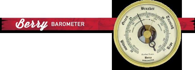Berry Barometer