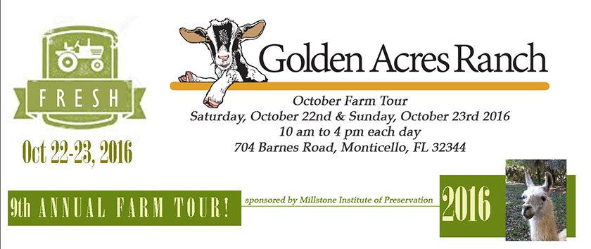 October Farm Tour at Golden Acres Ranch Florida